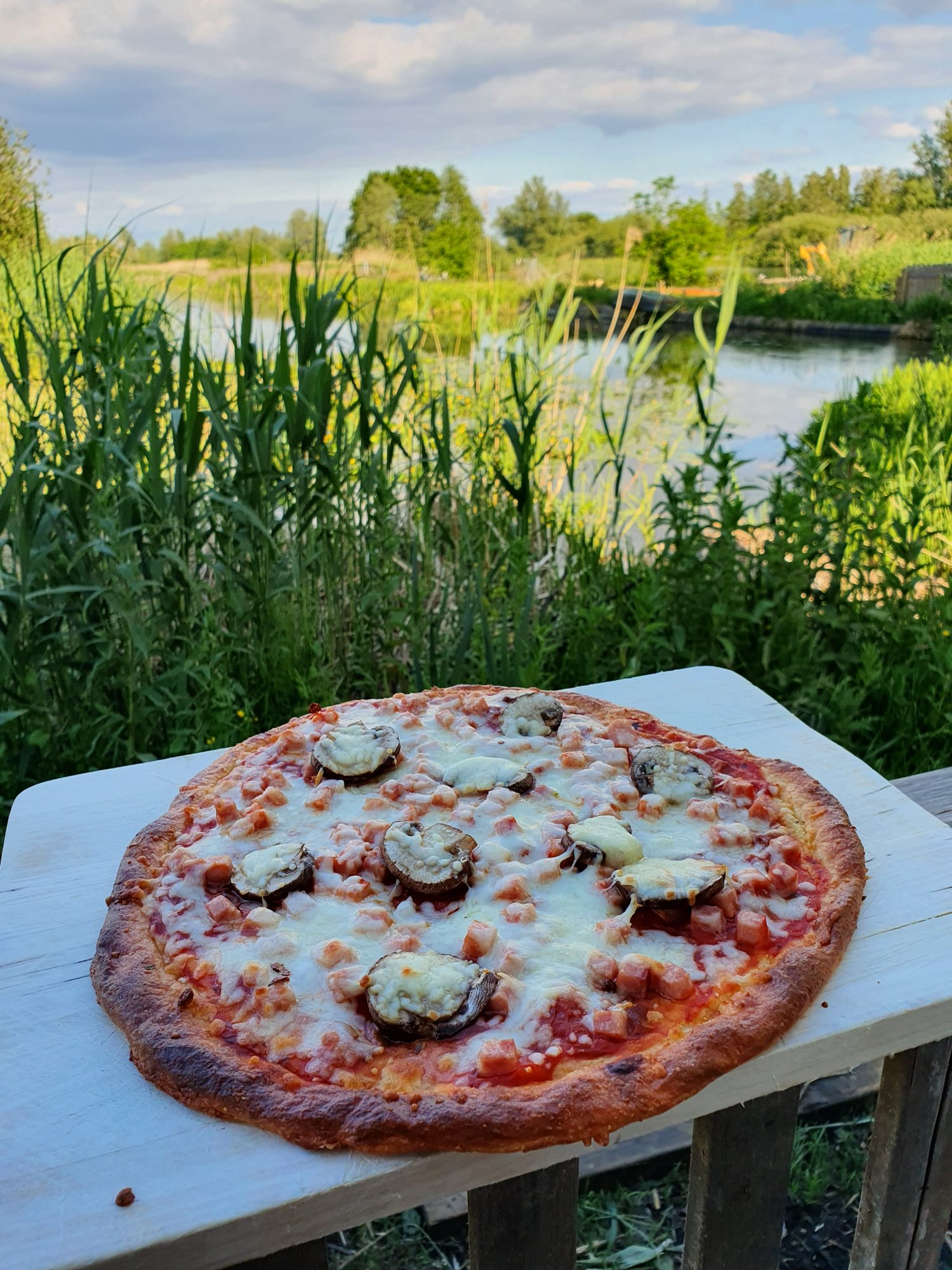 Keto Pizza   Mushroom & cheese